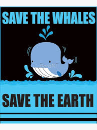Greenpeace Save The Whales Posters | Redbubble